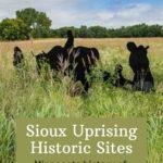 Sioux Uprising Minnesota