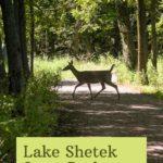 Lake Shetek State Park Minnesota