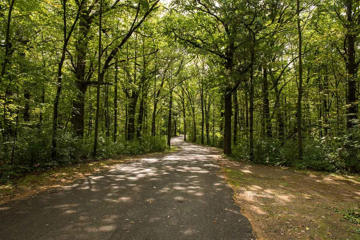 minnesota lindbergh state park camp road
