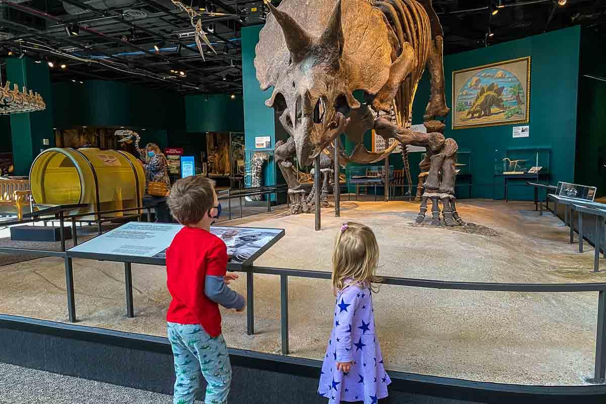 minnesota science museum dinosaur