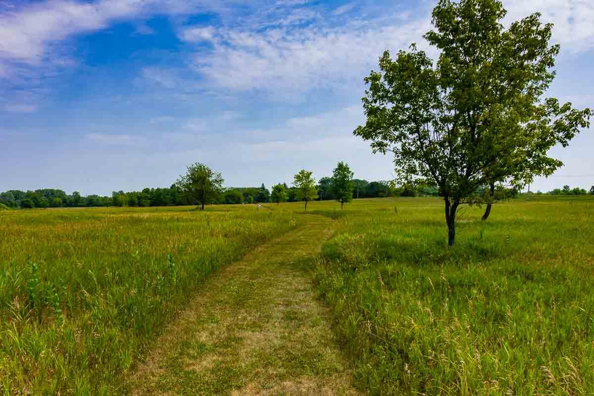 minnesota river valley state recreation hiking path prairie