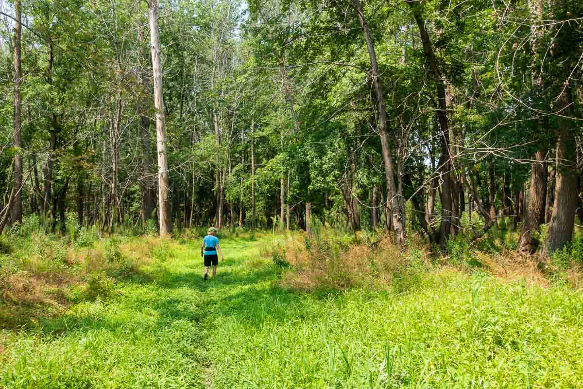 minnesota river valley state recreation hiking path